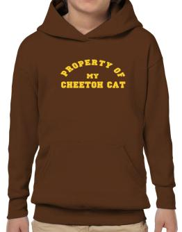 Property Of My Cheetoh Hoodie-Boys