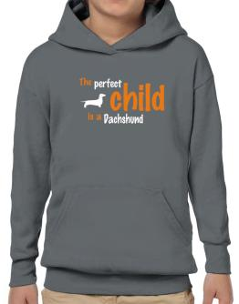 The Perfect Child Is A Dachshund Hoodie-Boys