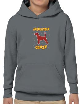 Absolutely Beagle Crazy Hoodie-Boys
