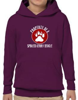 Property of a spoiled Kerry Beagle Hoodie-Boys