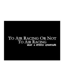 To Air Racing Or Not To Air Racing, What A Stupid Question Sticker
