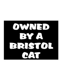 Owned By S Bristol Sticker