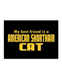 My Best Friend Is An American Shorthair Sticker