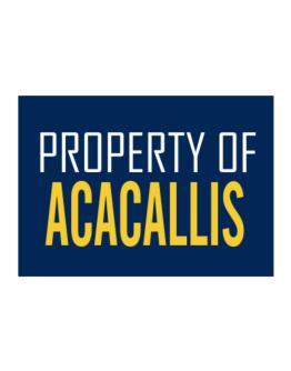 Property Of Acacallis Sticker