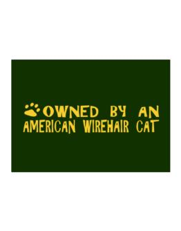 Owned By An American Wirehair Sticker