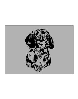 Dachshund Face Special Graphic Sticker