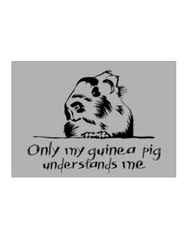 Only my guinea pig understands me Sticker