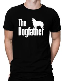 Polo de The dogfather Border Collie