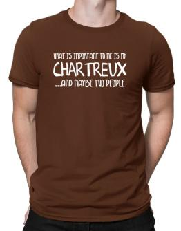 What is important to me is my Chartreux Men T-Shirt