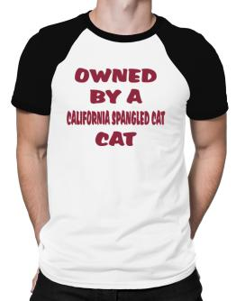 Owned By S California Spangled Cat Raglan T-Shirt
