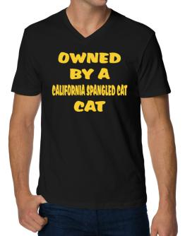Owned By S California Spangled Cat V-Neck T-Shirt