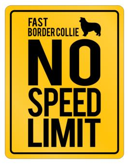 """"""" FAST Border Collie - NO SPEED LIMIT NONE """" Parking Sign"""