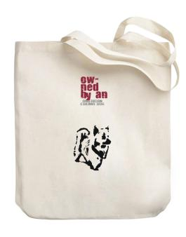 Owned By An American Eskimo Dog Canvas Tote Bag