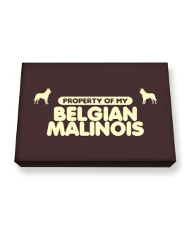 Property Of My Belgian Malinois Canvas square