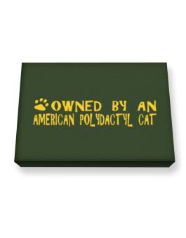 Owned By An American Polydactyl Canvas square