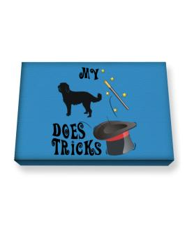 My Labradoodle Does Tricks ! Canvas square