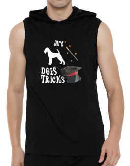 My Irish Terrier Does Tricks ! Hooded Sleeveless T-Shirt - Mens