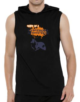 Owned By A Shetland Sheepdog Hooded Sleeveless T-Shirt - Mens
