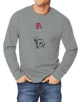 Owned By A Labradoodle Long-sleeve T-Shirt