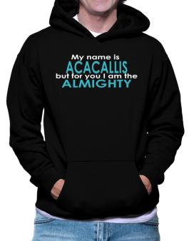 My Name Is Acacallis But For You I Am The Almighty Hoodie