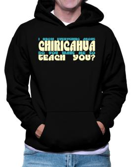 I Know Everything About Chiricahua? Do You Want Me To Teach You? Hoodie