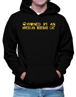 Owned By An American Wirehair Hoodie