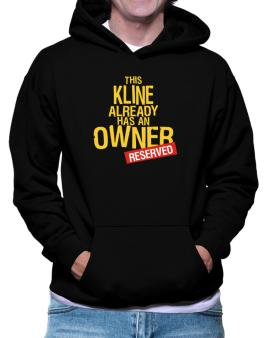 This Kline Already Has An Owner - Reserved Hoodie