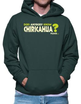 Does Anybody Know Chiricahua? Please... Hoodie
