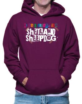 My Best Friend Is Shetland Sheepdog Hoodie