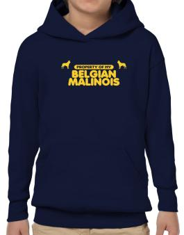 Property Of My Belgian Malinois Hoodie-Boys