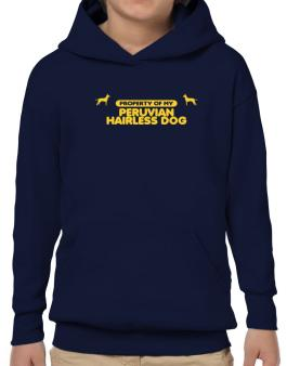 Property Of My Peruvian Hairless Dog Hoodie-Boys