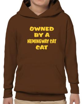 Owned By S Hemingway Cat Hoodie-Boys