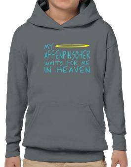 My Affenpinscher Waits For Me In Heaven Hoodie-Boys