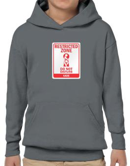 Restricted Zone - Do Not Disturb Kade Hoodie-Boys