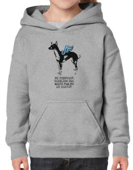 My Peruvian Hairless Dog Waits For Me In Heaven Hoodie-Girls