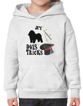 My Bolognese Does Tricks ! Hoodie-Girls