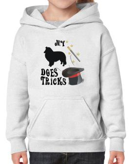 My Shetland Sheepdog Does Tricks ! Hoodie-Girls