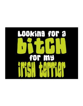 Looking For A Bitch For My Irish Terrier Sticker