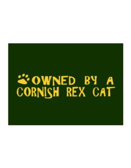 Owned By A Cornish Rex Sticker