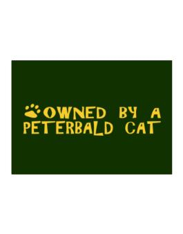 Owned By A Peterbald Sticker