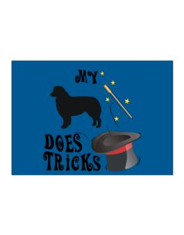 My Australian Shepherd Does Tricks ! Sticker