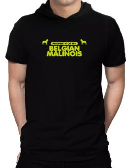 Property Of My Belgian Malinois Hooded T-Shirt - Mens