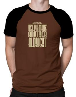 Help Me To Make Another Albright Raglan T-Shirt