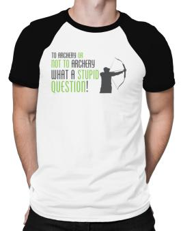 To Archery Or Not To Archery, What A Stupid Question! Raglan T-Shirt