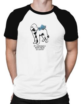 My Labradoodle Waits For Me In Heaven Raglan T-Shirt