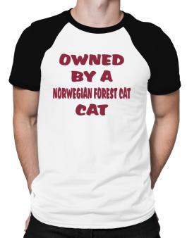 Owned By S Norwegian Forest Cat Raglan T-Shirt