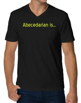 Abecedarian Is V-Neck T-Shirt