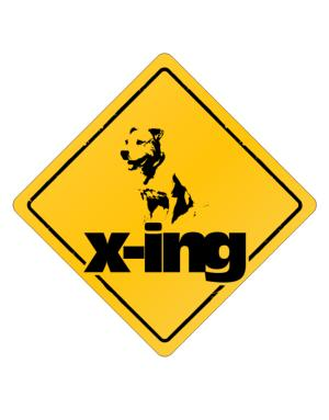 Crossing Sign de American Pit Bull Terrier X-ing