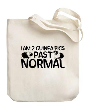 I am two guinea pigs past normal Canvas Tote Bag