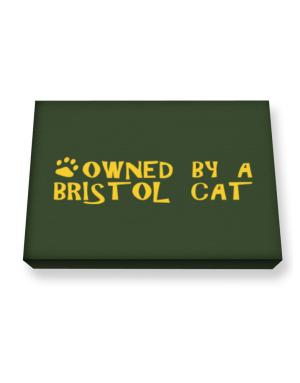 Owned By A Bristol Canvas square